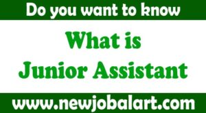 What is junior assistant